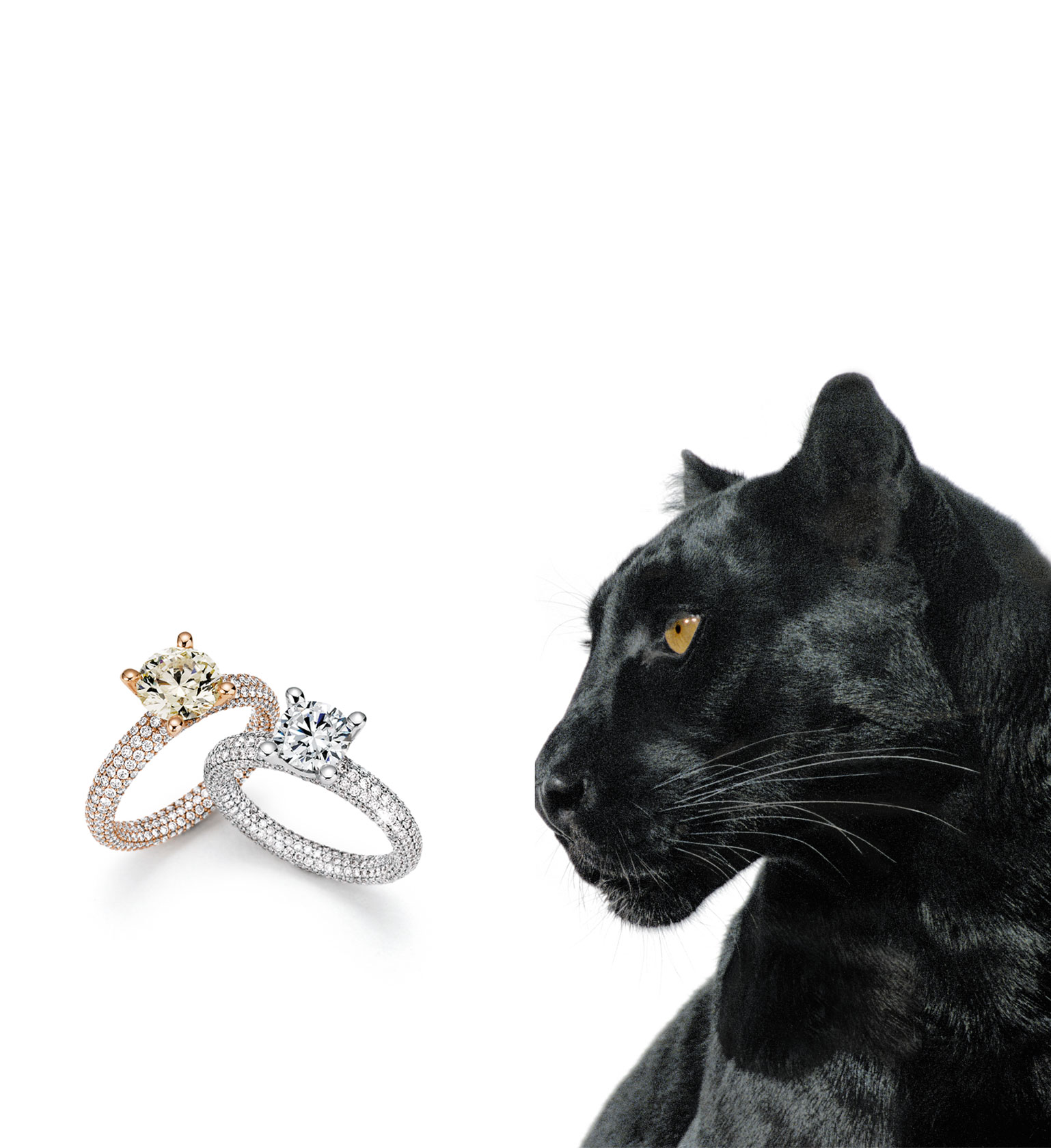 noor-by-wurster-diamonds_Ringe_Panther